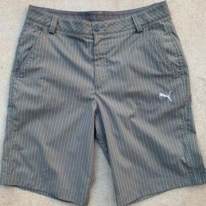 "mens PUMA Dry Cell Golf Shorts 11"" Striped Gray 34"
